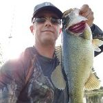 bassin-on-a-budget
