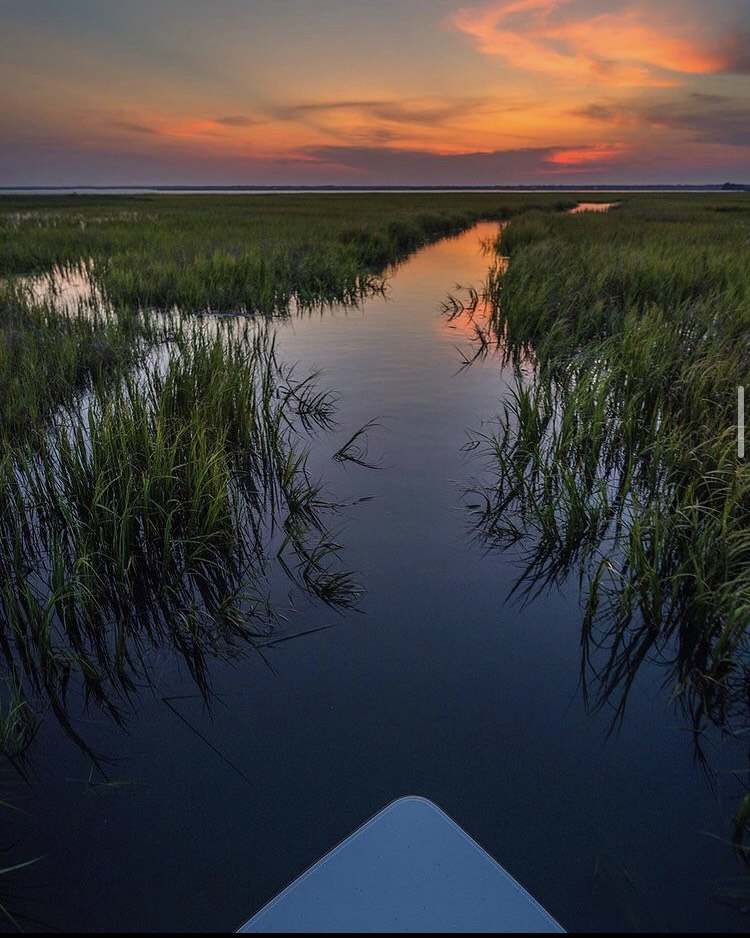 Finding solitude in lowcountry.  Where are you fishing this weekend?  Photo: Jason Stemple