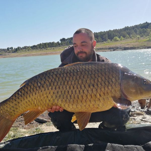 33.07 lbs Common carp caught by Aitor Perez