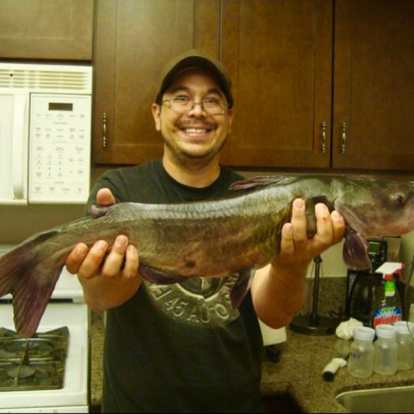 11 lbs / 30 in Blue catfish caught by Barry Shimauchi