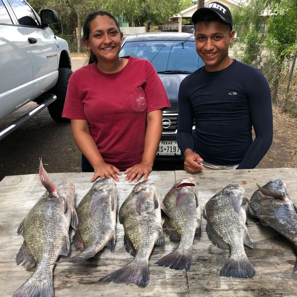 9 lbs / 25 in Black drum caught by Lynee Sanchez