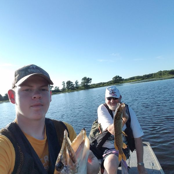 Northern pike caught by Josh A