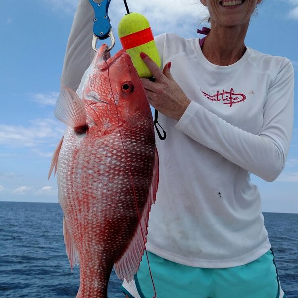 10 lbs / 27 in Northern red snapper caught by Dale Blake