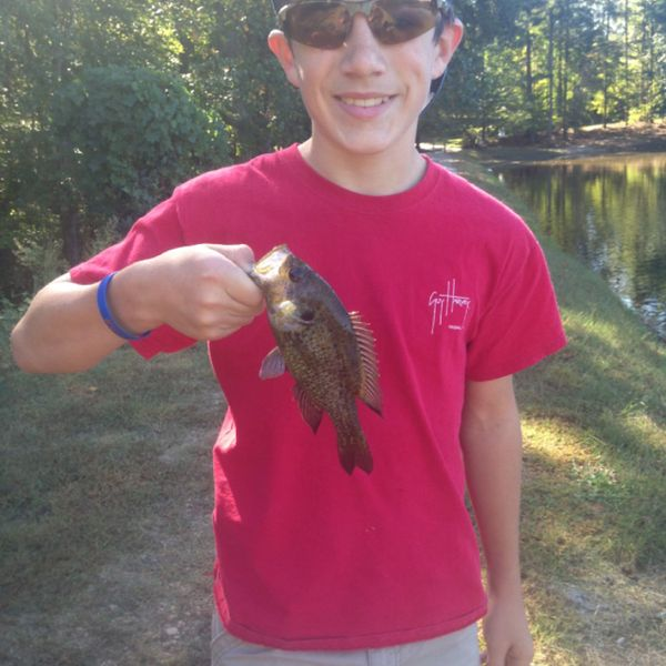 Biggest catches in Lake Judy
