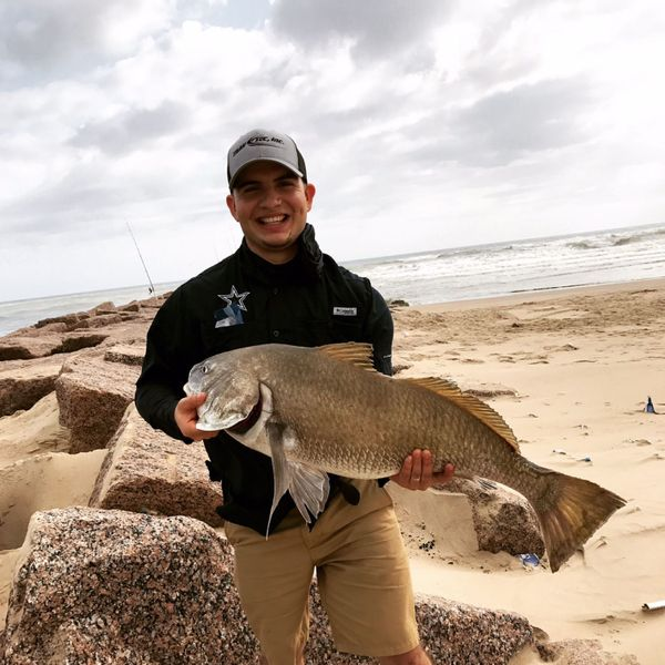 30 in Black drum caught by Alexis Montalvo