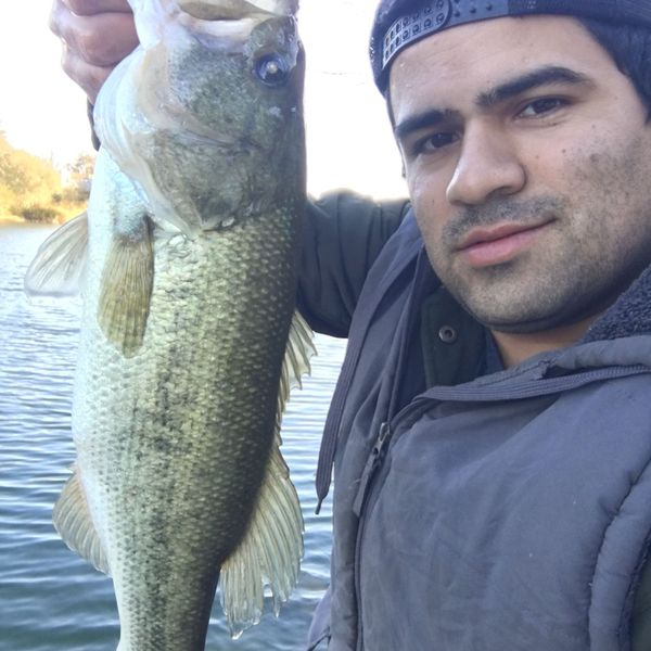 5 lbs / 32 in Largemouth bass caught by Isaac Valdez