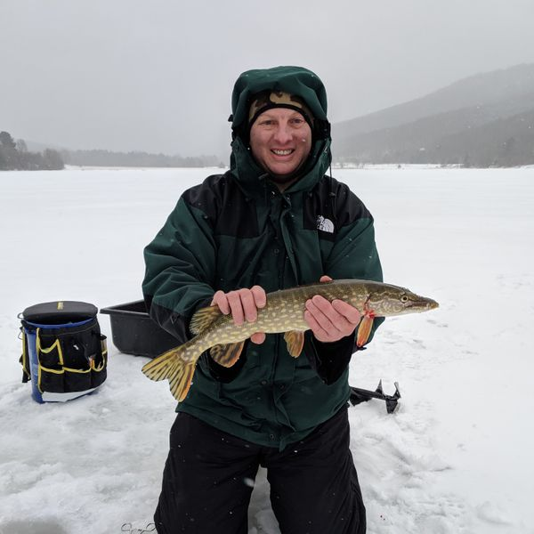22 in Northern pike caught by Randy G
