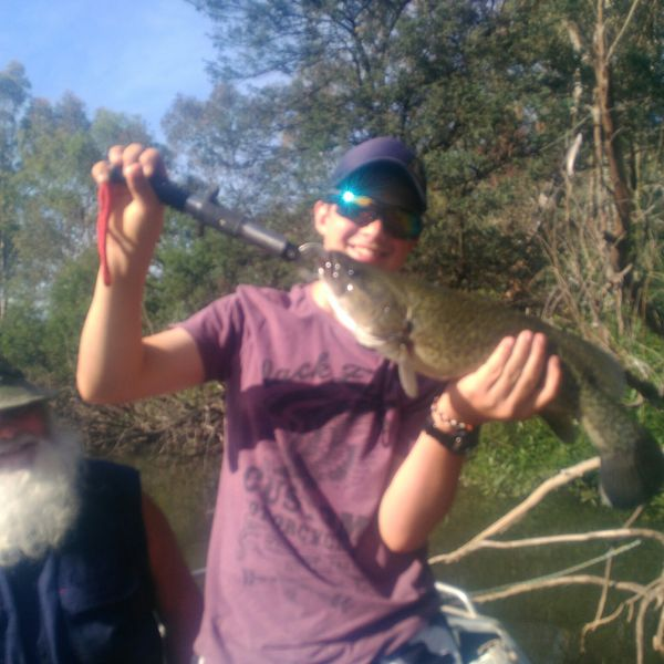 18 in Murray cod caught by Glen Vearing