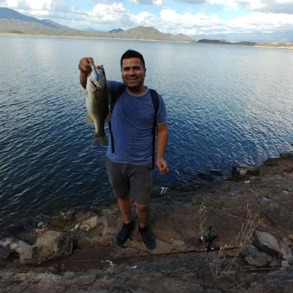 6.38 lbs / 50 in Largemouth bass caught by Isaac Valdez