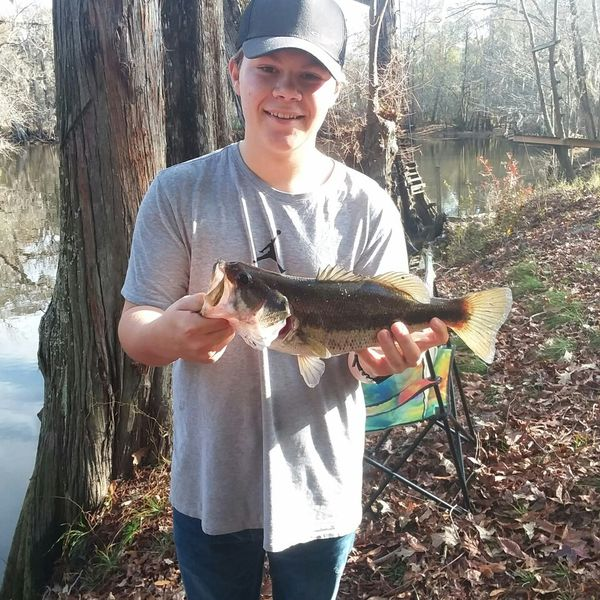3.13 lbs / 25 in Largemouth bass caught by Samuel Register