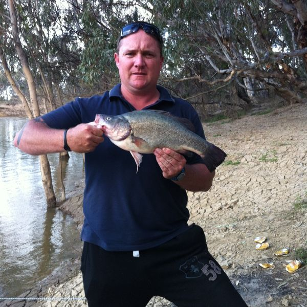 Golden perch caught by Jeremy Winzar