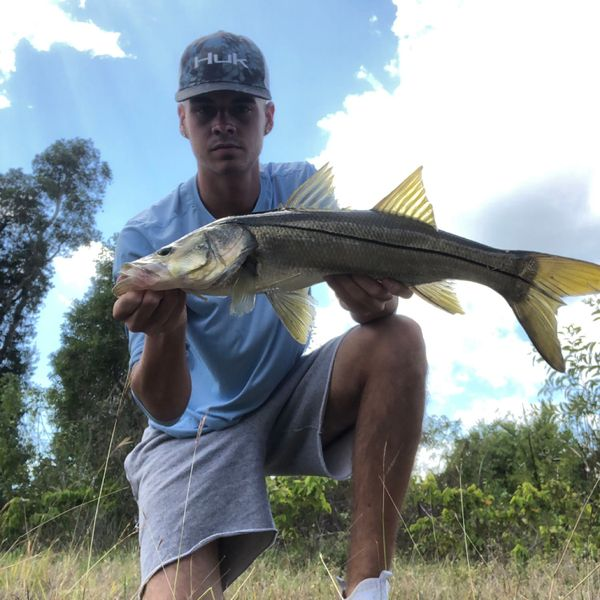 6 lbs / 25 in Common snook caught by jason Miller