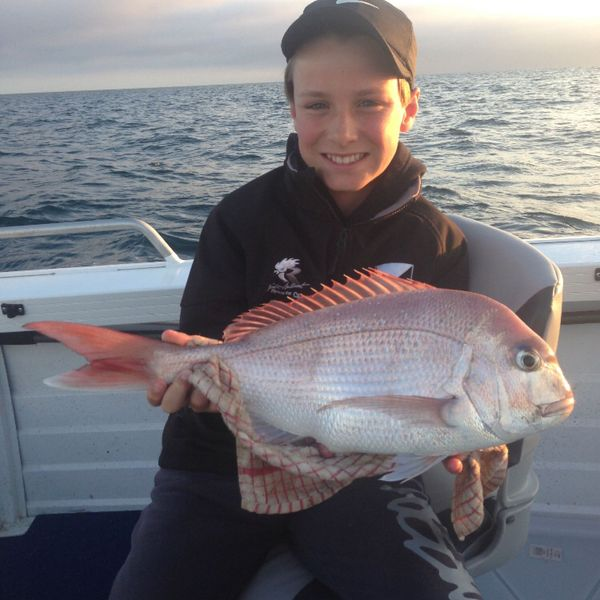 8 lbs / 22 in Australasian snapper caught by Ethan York