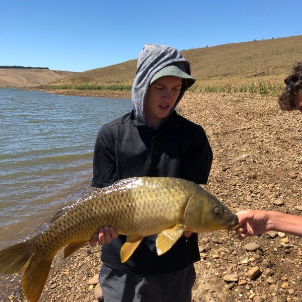 Common carp caught by Lachlan Smith