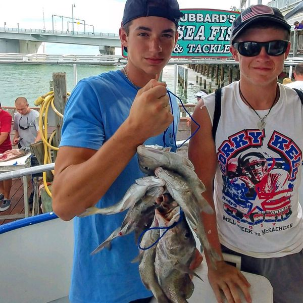 Greasy grouper caught by Jack Sawyer
