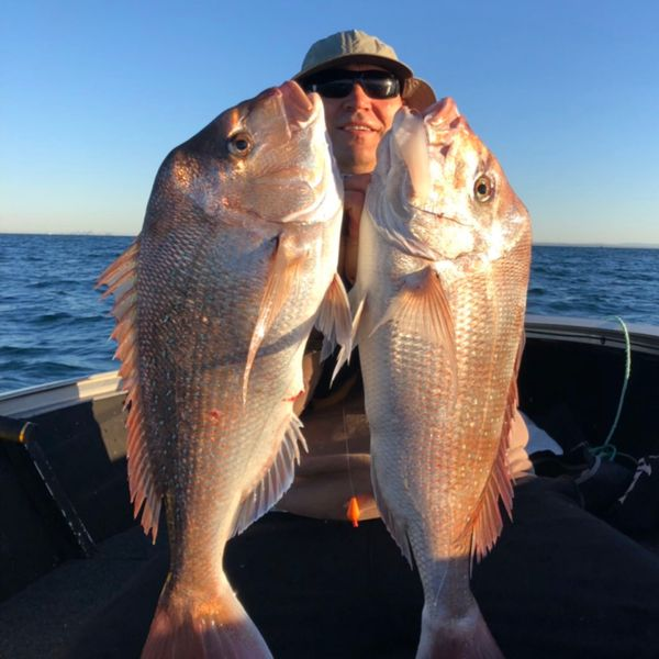 29 in Australasian snapper caught by Nicole Burns