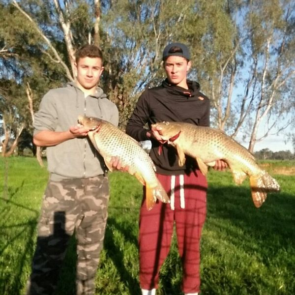 16 lbs / 28 in  caught by James Elward