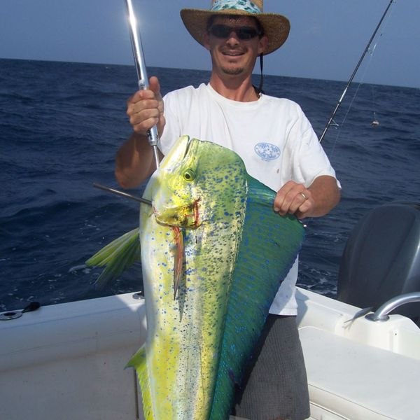 33 lbs Common dolphinfish caught by TC Wood