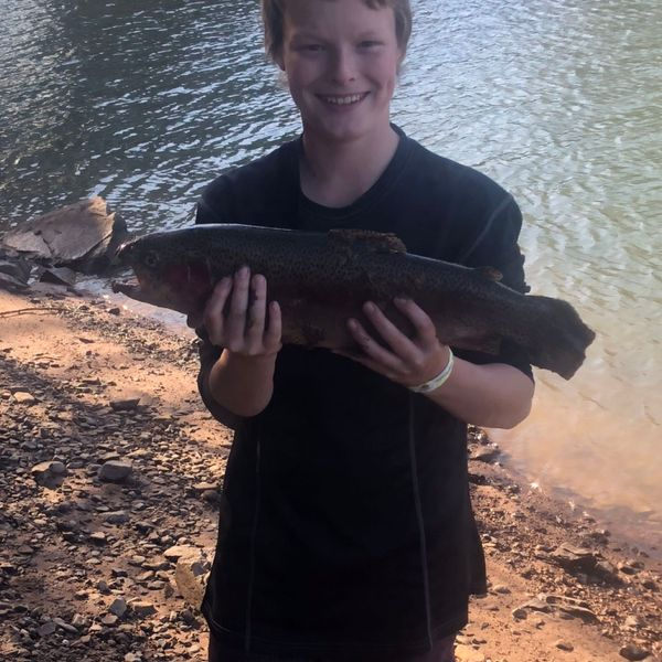 4.31 lbs / 16 in Rainbow trout caught by Mackenzie Scott Thomas